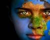Африка снова набирает популярность среди туристов, несмотря на политическую неразбериху