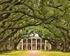 Экскурсия по Луизиане