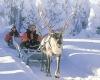 Финляндия туры - отзывы будут полезны