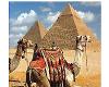 Развитие туризма на Ближнем Востоке является перспективным