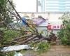В Китае в результате стихийного бедствия погибли 17 человек