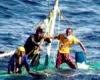 Члены экипажа тайваньского рыболовного судна были спасены на севере Филиппин