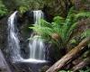 Тасманию превратят в туристический центр мира