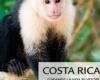 RIU создает Национальный заповедник Дикой природы в провинции Гуанакасте