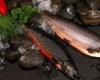 В конце февраля в Исландии пройдет кулинарный фестиваль