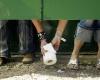 Дефицит туалетной бумаги в Венесуэле приводит в ужас местных жителей