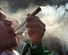ООН выразила протест против нового законопроекта в Уругвае