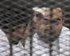 Активистов в Египте посадили в тюрьму на длительный срок