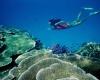 ВМС США занимается обезвреживанием  бомб, сброшенных на Большой Барьерный риф в Австралии
