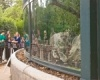 В Париже вновь открылся зоопарк