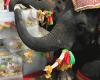 13 марта в Таиланде отмечают праздник слонов